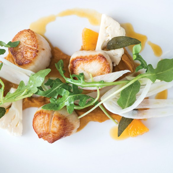 Musette - Maine scallops with butternut puree, orange reduction, fennel, arugula, and crispy sage.