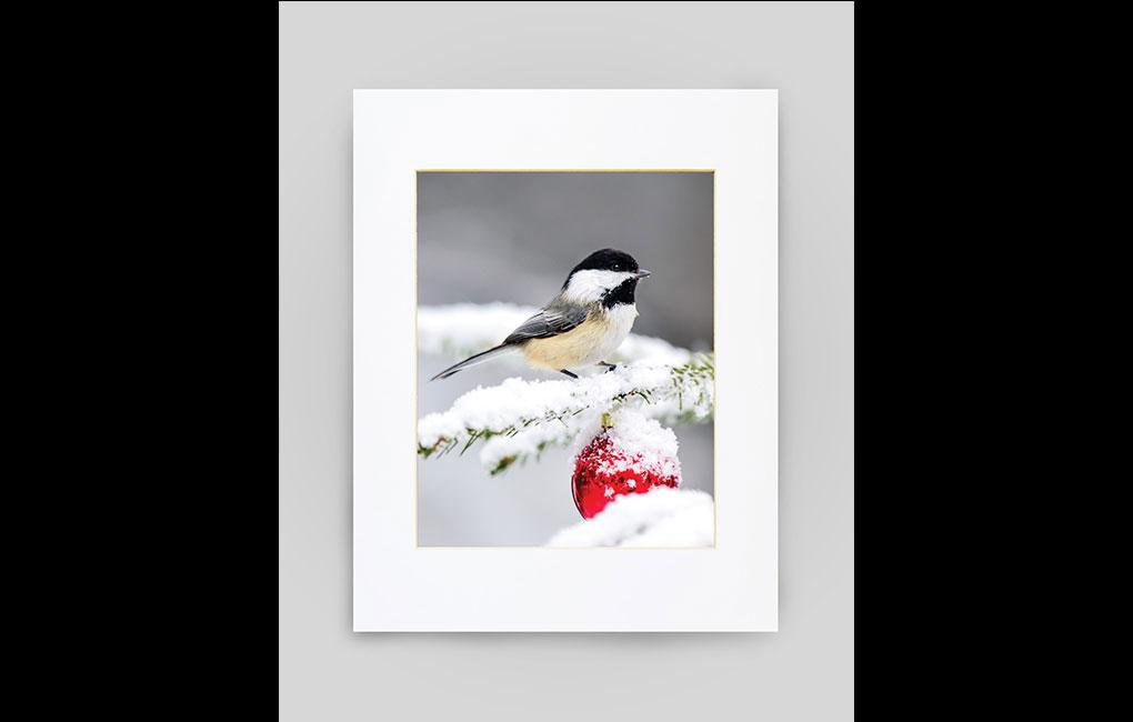 Maine gifts, Chickadee Print
