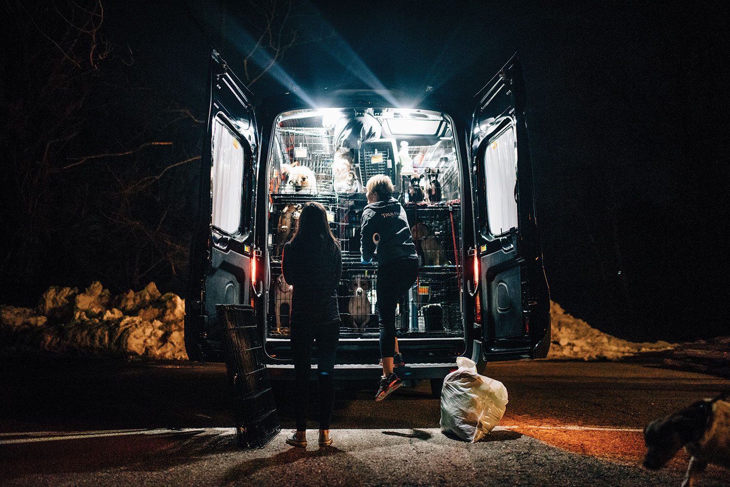 Animal transporter Heather Hobby, right, together with the author, preparing to unload dogs during a nighttime stop on their more than 1,600-mile journey from Mississippi to Maine.