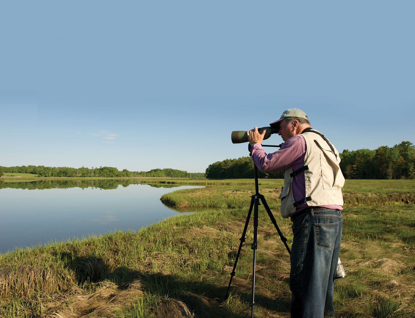 Birding at Weskeag Marsh, Thomaston