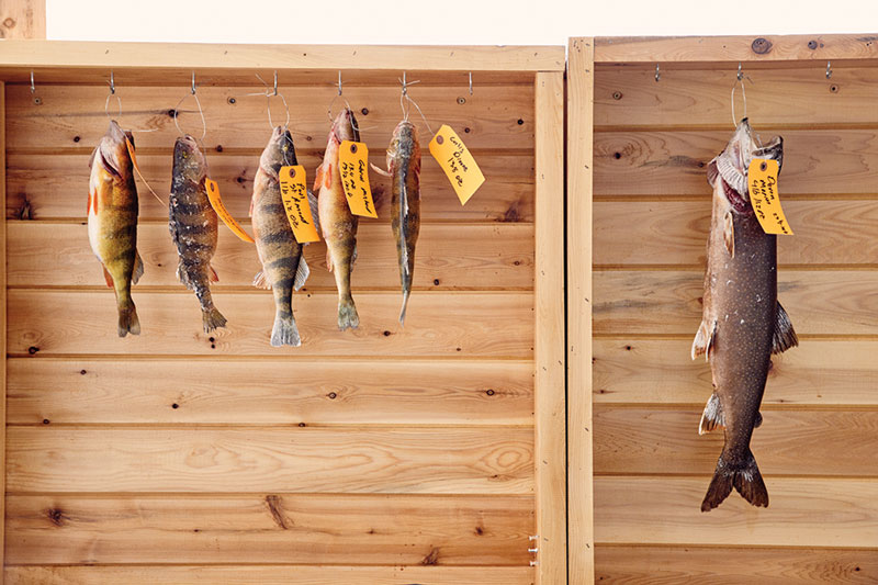Contenders for largest perch (left) and largest salmon (right) hang at Sinclair's Long Lake Sporting Club