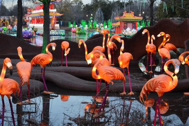 Lighted Flamingos