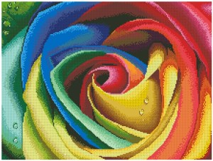 Cross stitch pattern download in PDF file with coloured rose