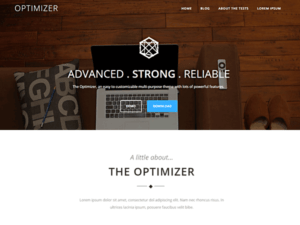 optimizer-theme-600x450