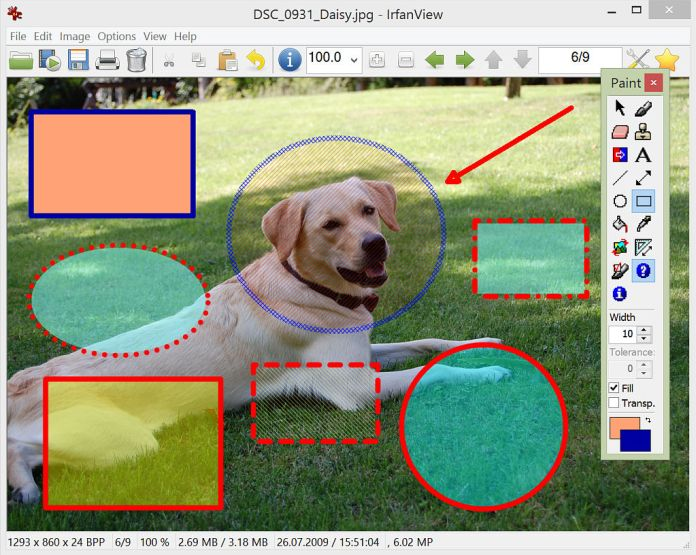 IrfanView Software To Edit Object