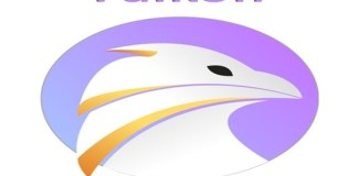Falkon browser image 1