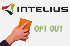 intelius-whitepages-alternative