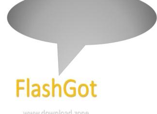 FlashGot pic