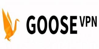 GOOSE-VPN-software
