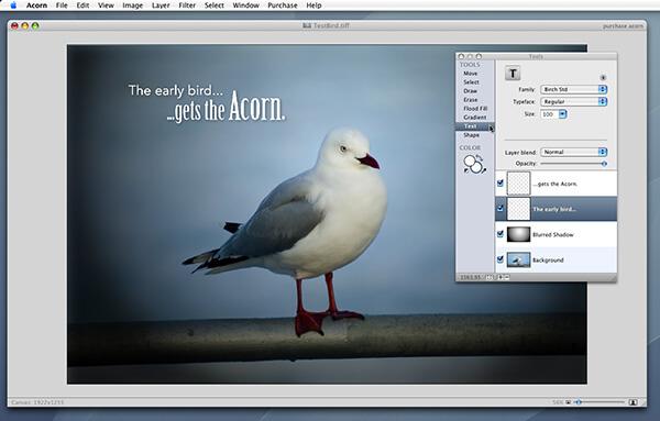 acorn Main Windows For Mac