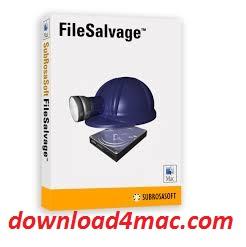 FileSalvage 9.2 Crack FREE Download