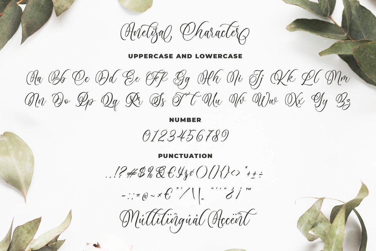 Anelisa-Font-3