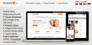 DonateNow v4.4 | WordPress Theme for Charity