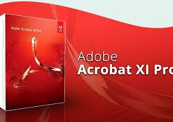How to download Adobe Acrobat Pro XI for free