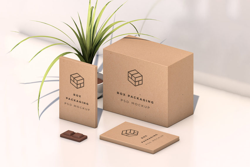 Download Isometric Box Packaging Mockup Free PSD | Download Mockup
