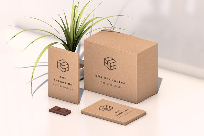 Download Isometric Box Packaging Mockup Free PSD   Download Mockup