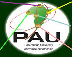 Pan-African University Post UTME Past Questions
