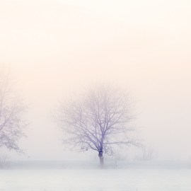 Enya White is in the winter lyrics and mp3 download