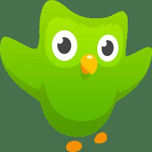 Duolingo-icon