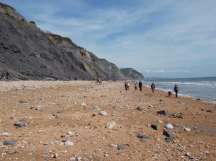 Charmouth beach- a world heritage site for fossils