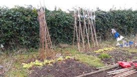The plots are needing some TLC