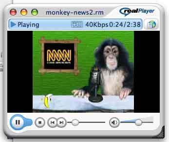 ROK Media - Monkey News