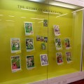 The Story of Cricket exhibition at Lords cricket ground. Image courtesy and © Penguin Ventures