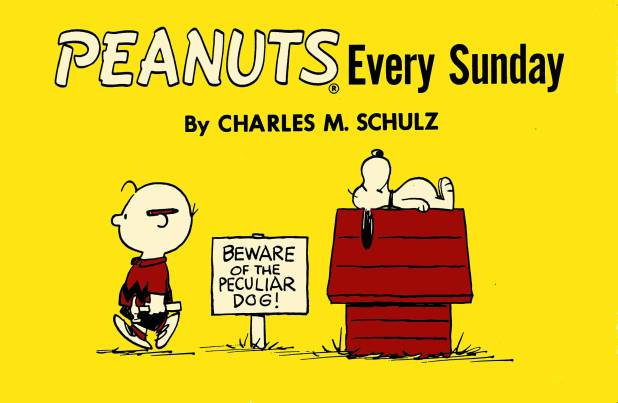 Peanuts Every Sunday Trade Paperback 1958-1961 (Titan Edition)