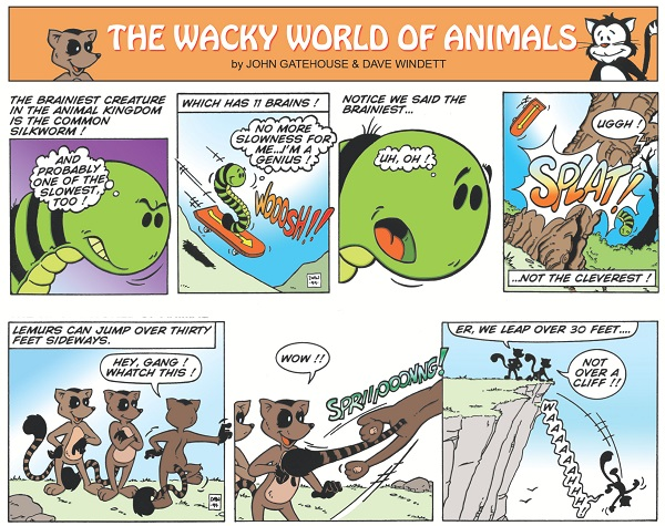 """The Wacky World Of Animals"" - script by John Gatehouse, art by Dave Windett © John Gatehouse & Dave Windett"