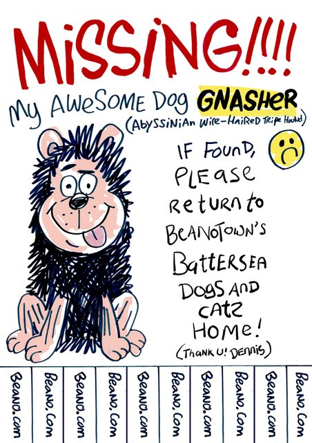 Missing Gnasher Poster 2018
