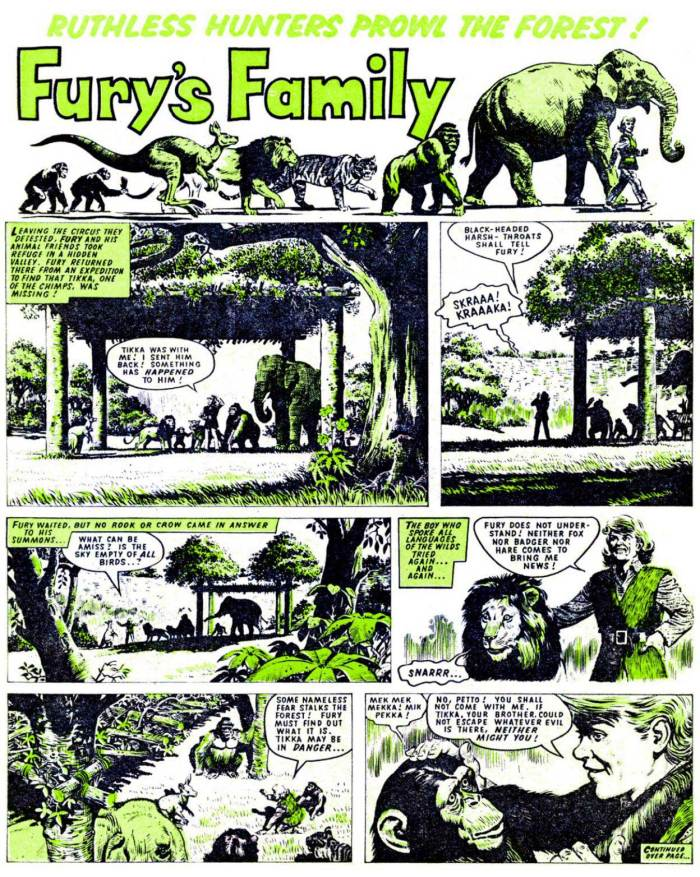 "The opening page of ""Fury's Family"" from Thunder Issue 11, cover dated 26th December 1970. Art by Denis McLoughlin"