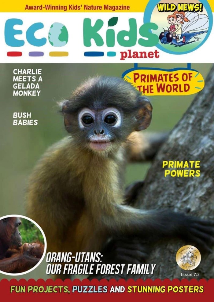Eco Kids Planet has already established a strong following