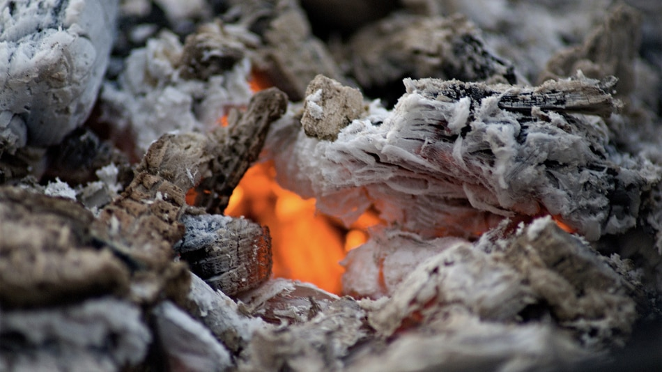 Super How To Use Wood Ashes In The Home And Garden The Ultimate Guide Home Remodeling Inspirations Propsscottssportslandcom