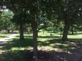 Capitol-Park-downtown-Austin-2-750