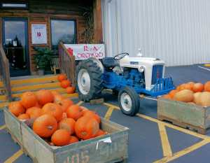 R&A Orchards side entrance