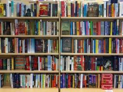 shelvespic