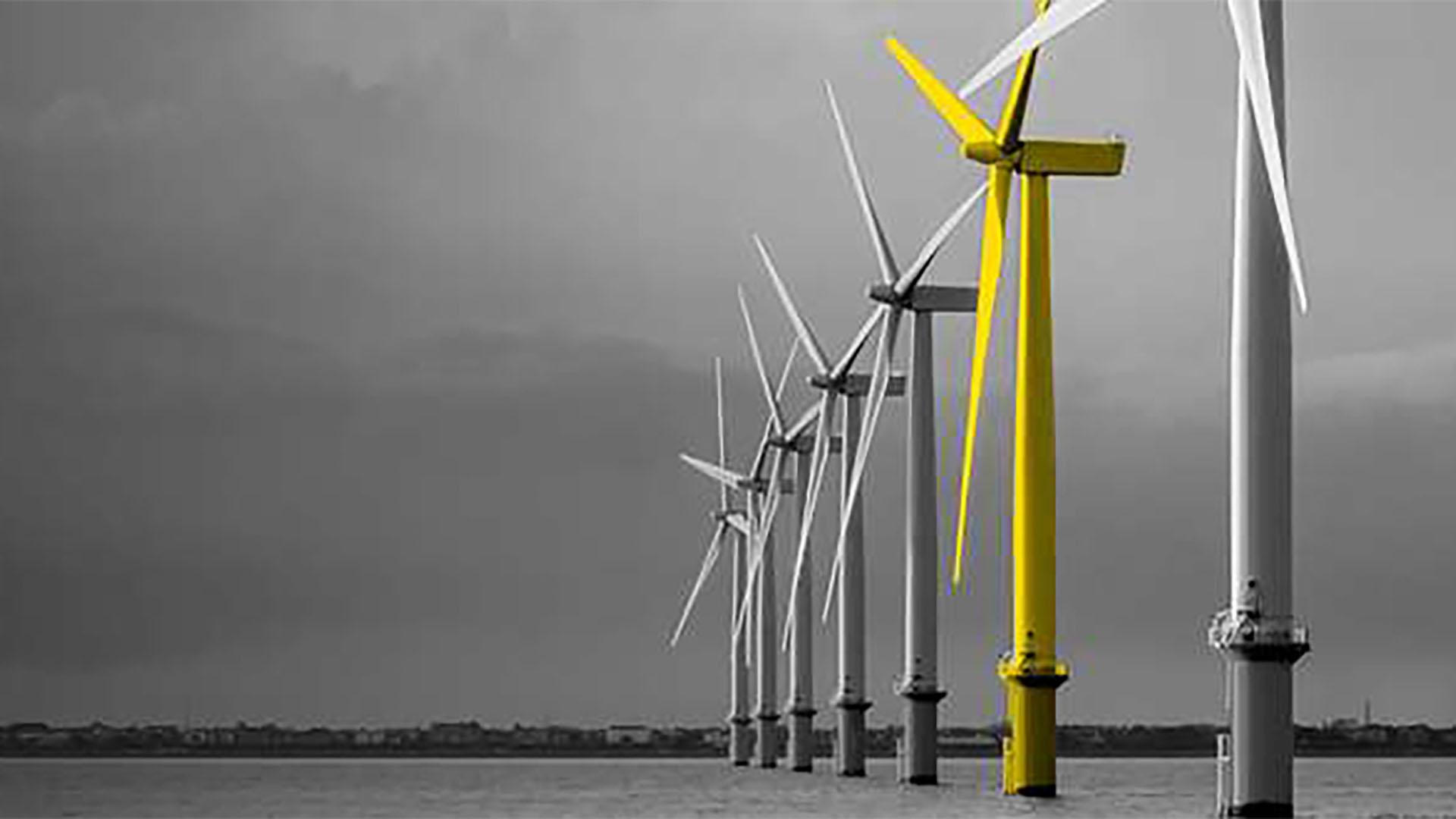 Expert Insight Series – Green Energy Outlook