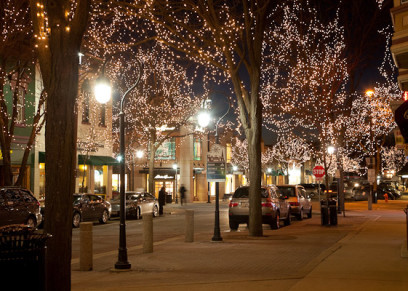 Image result for downtown naperville