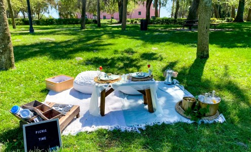 Spring Trend: Pop-Up Picnics in the Park