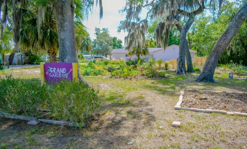 An Urban Farmer's Paradise in Tampa Bay