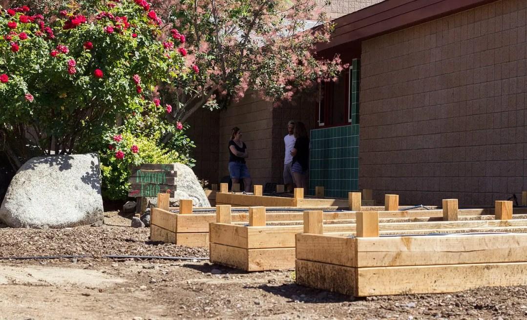 Urban Roots nonprofit garden