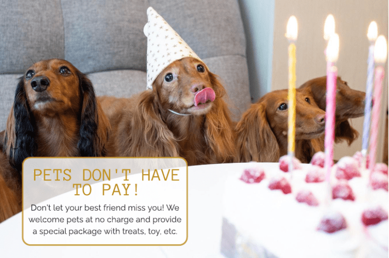 Pet's don't have to pay!
