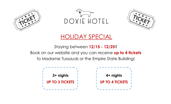 December Ticket Special
