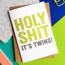 Holy Shit It's Twins Lorem Fucking Ipsum - DYP loves swearing!