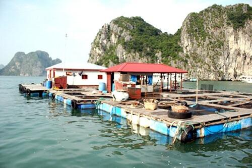 Cong Dam - Halong Bay, Noord Vietnam