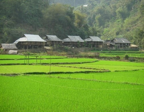 Mai Chau Homestay - Vietnam