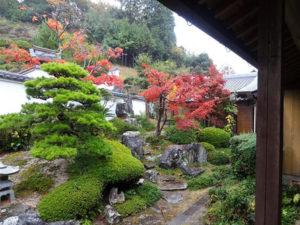 garden_img