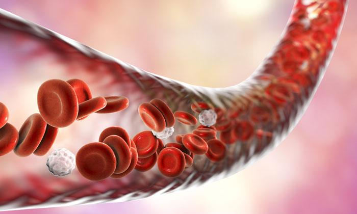 Septisemia Symptoms Prevention Treatment And Diagnosis-Telugu Health News