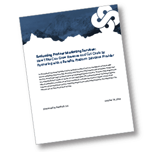 White Paper: Evaluating Partner Marketing Services