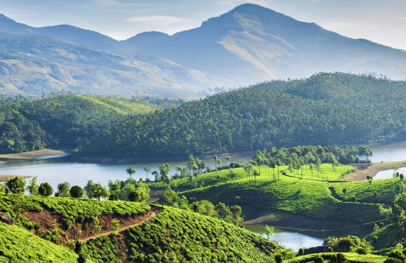 monsoon vacation in Munnar Kerala